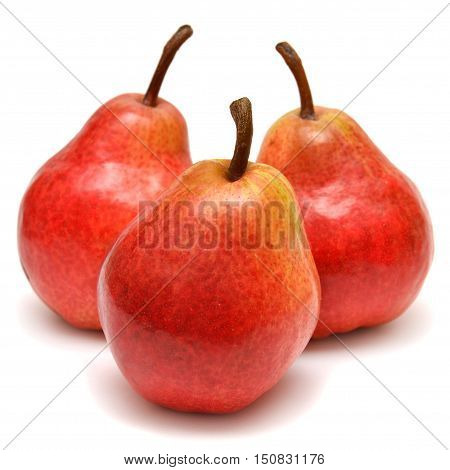 Three red pears isolated on white background.