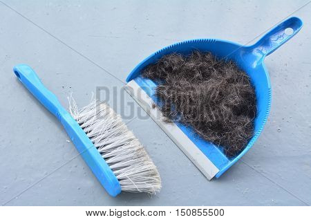 Brush Broom With Dustpan Cleaning Human Hair