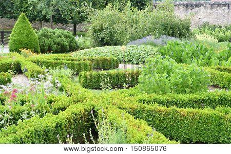 Saint Martin de Boscherville, France - june 22, 2016 : the Saint Georges abbey garden in Seine Maritime.