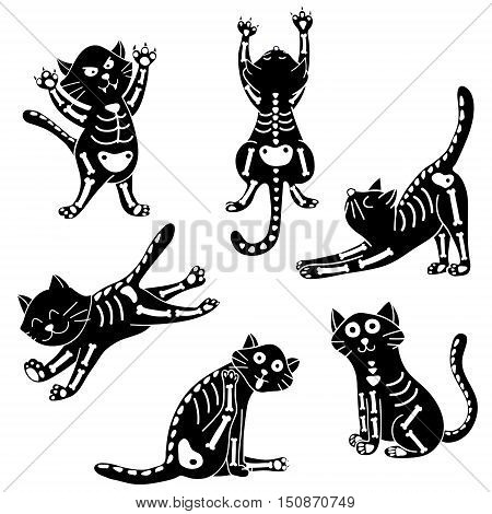 vector set of cats wearing Halloween costumes of skeleton