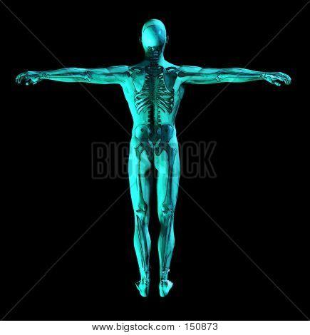 Medical Scan 2 Copy