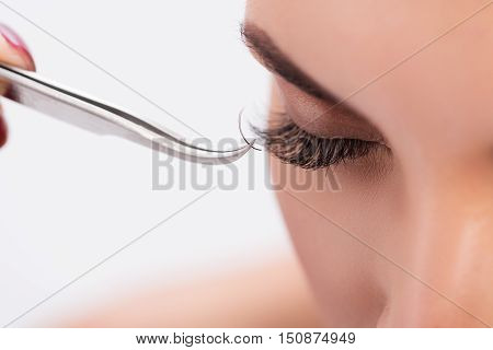 Close up of female eye getting lash extension. Tweezers sticking lash to eyelid