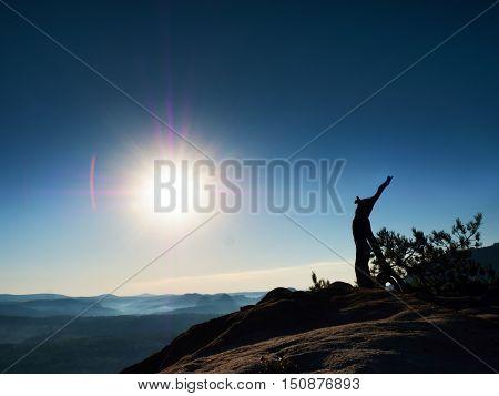 Autumn Daybreak In Sandstone Rocks,broken Pine Tree.  Fall Valley Of Saxony
