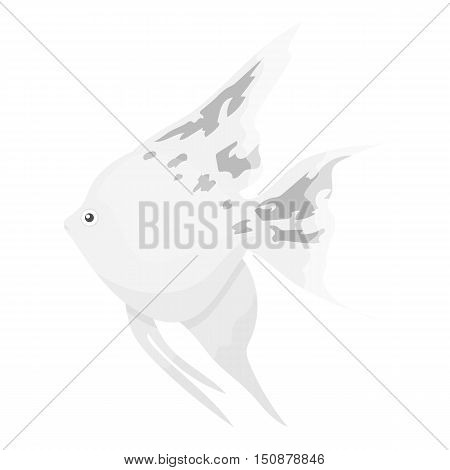 Angelfish common fish icon monochrome. Singe aquarium fish icon from the sea, ocean life monochrome.