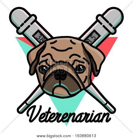 Color vintage veterinarian emblem. Emergency veterinarian symbols. Vector illustration, EPS 10