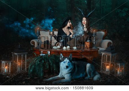 Girls of the witch in the wood cook a magical potion the wolf lies nearby.