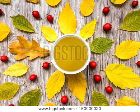 Bright autumn composition with tea cup decorated with leaves and berries on wooden background. Top view flat lay view from above. Fall background yellow red green colors