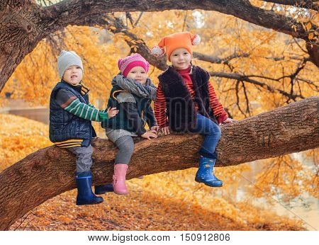 Kids sitting on the trees branch in autumn forest.