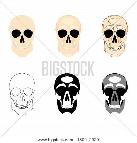 Collection icons human skulls logo in various styles, silhouette, line, color, simple, monochrome, medicine division at the skull bones isolated on a white background