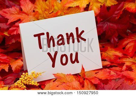 Thank you message Some fall leaves with a greeting card with text Thank You