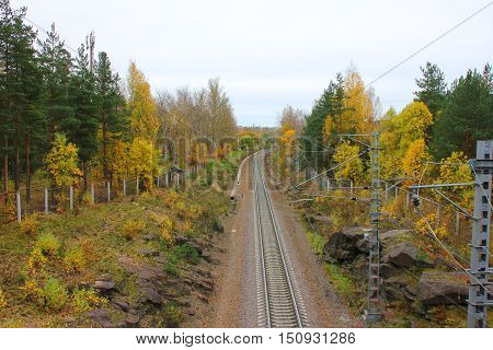 Rail road train track pathway colorful autumn fall landscape. Transit transportation industrial background. Travel, trip, journey through forest, park, trees nature concept with empty copyspace