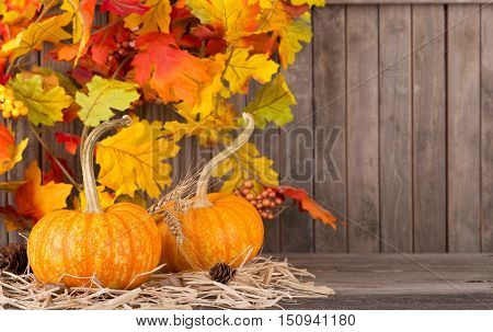 Autumn pumpkins with colorful leaf decoration on a wooden background for copy space