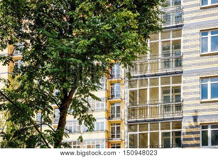 New modern multistorey apartment building with tree on the foreground