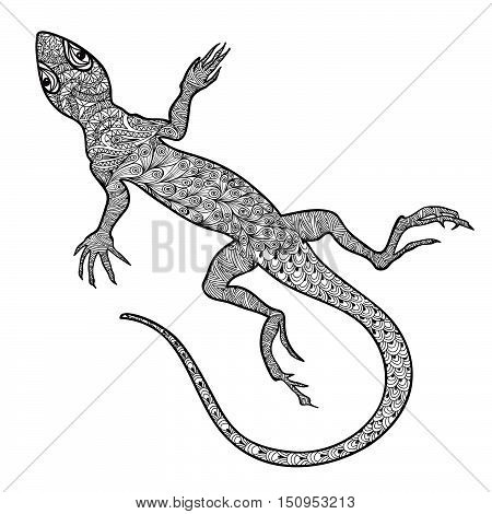 Lizard isolated. Hand drawn vector salamander with ethnic tribal ornamental zentagle pattern. Sketch of lizards reptiles with long curved tails