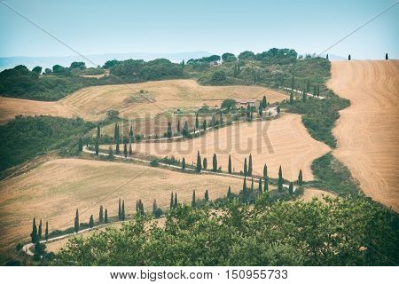 Winding Tuscan road. Montecchiello, Italy