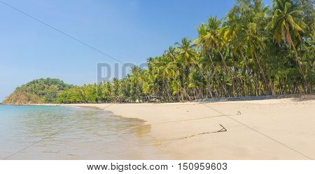 Beautiful beach of Ngapal with palms hanging over the seai, Myanmar