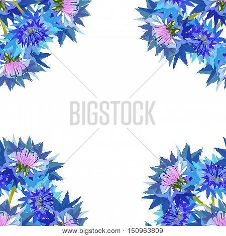 Background Cornflower Of Wild Flowers. Vector Illustration