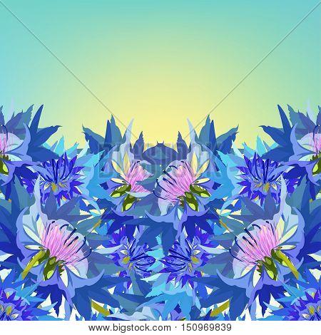 Postcard Cornflower Of Wild Flowers At Dawn. Vector Illustration