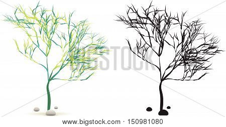 Algae Water Plant With Stones Set Isolated On White With Silhouette In Vector