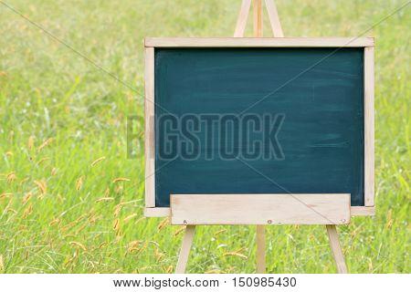 Wooden easel with blank chalkboard on green field, park or garden