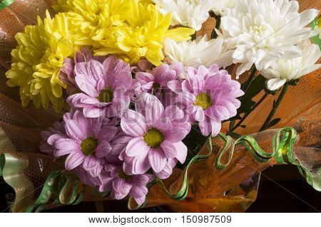 Beautiful bouquet from natural colour of the chrysanthemums close-up