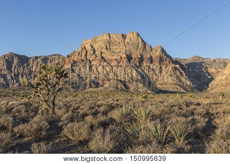 Early morning view of Mt Wilson in Red Rock Canyon National Conservation Area.  A popular natural destination 20 miles from the Las Vegas strip.
