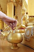 Give coin in alms bowl, a man put a Baht coin in a monk bowl for making merit or donation, buddhism Thai people donating money for temple, row of bowl poster