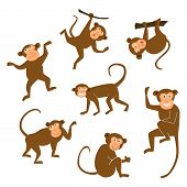 Chinese New Year 2016 monkeys decoration icon. Monkey in east style. Happy ape collection. Chinese Monkey graphic illustration. Brown chimpanzee on white isolated background. poster