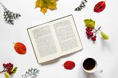 Workspace. Composition of text book, a cup of tea, autumn leave, red berries of haw on white background. poster