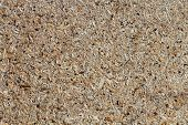 osb - oriented strand board or qsb - qu?lity str?nd b?ard chipboard texture or chipboard background with copy space for text or image. poster