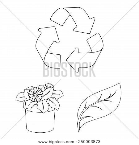 Bio And Ecology Outline Icons In Set Collection For Design. An Ecologically Pure Product Vector Symb