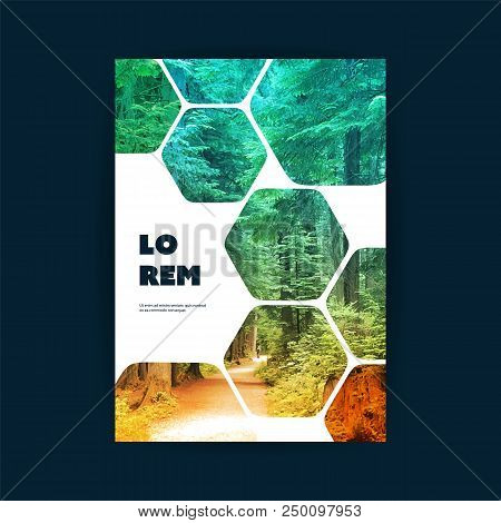 Modern Style Tiled Flyer Or Cover Design For Your Business With Forest Road Image - Applicable For R