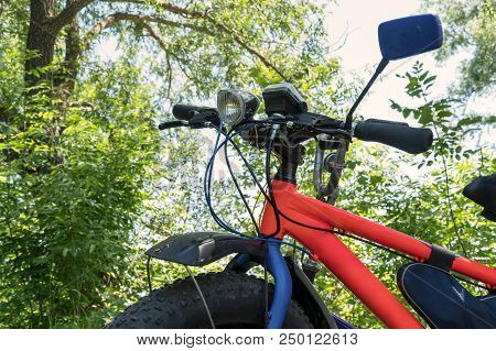 Fat Bike-mountain Bike With Thick Tires In The Forest