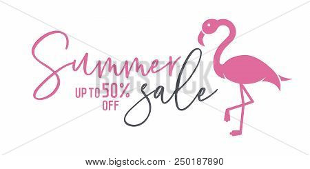 Summer Sale Background With Flamingo And Calligraphic Text For Commerce, E-commerce, Online Shopping