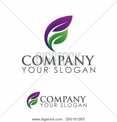 Logo Of Leaf Ecology Nature Element Vector Icon. Design Shape Leaf Logo And Abstract Organic Leaf Lo