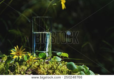 Clear Water In A Clear Glass Against A Background Of Green Moss With A Mountain River In The Backgro