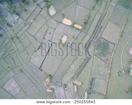 Rice Terrace Aerial Shot