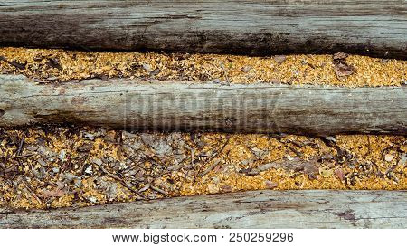 Wood Background. Old Wooden Wall. Old Wood. Old Wood Background. Weathered Wood Texture Closeup Phot