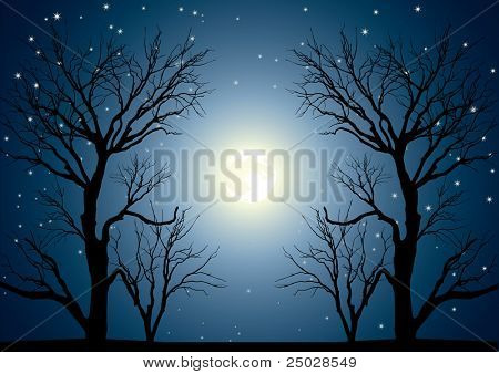 Landscape with trees and full moon