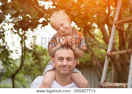 Little Blond Boy With An Apple In His Hands On His Father's Shoulders. Garden In The Background