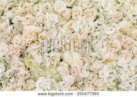 Artificial White Roses, Hydrangea, Peonies Flower As Background And Decoration, Stock Photo Image