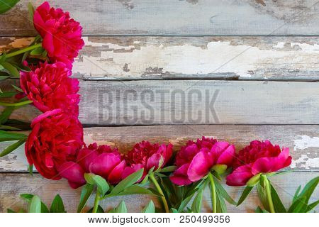 Red Peonies Flowers Border On Aged Wooden Background. Selective Focus. Place For Text.