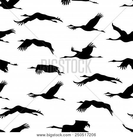 Seamless Wallpaper With Silhouette Flying Japanese Cranes On White Background. Monochrome Black And