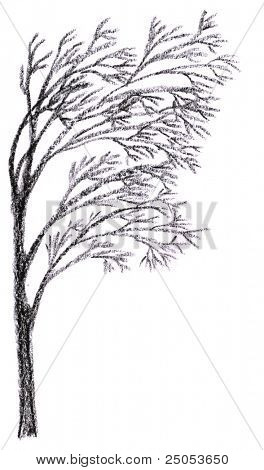 Silhouette of Loneliness Tree Charcoal Drawing for page conner