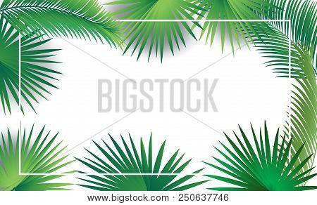 Sukkot And Rosh Hashanah Festival Palm Tree Green Leaves Frame On White Background. Rosh Hashana, Su
