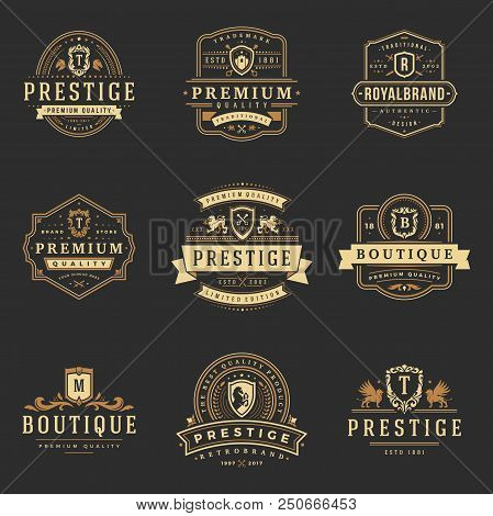 Luxury Monograms Logos Templates Vector Objects Set For Logotype Or Badge Design. Trendy Vintage Roy