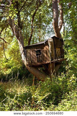 Abandoned Kid Tree House. The Stock Photo.