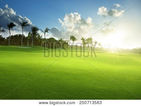 spring grass, golf field