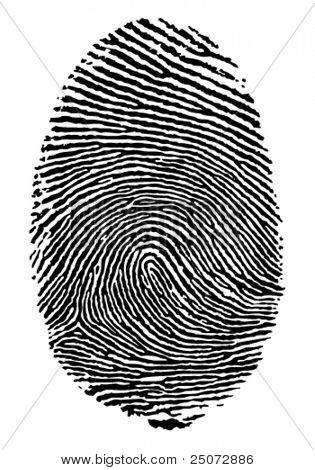 Vector format of finger print.