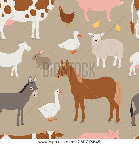 Different Home Farm Vector Animals And Birds Like Cow, Sheep, Pig, Duck Set Illustration. Cartoon Ma